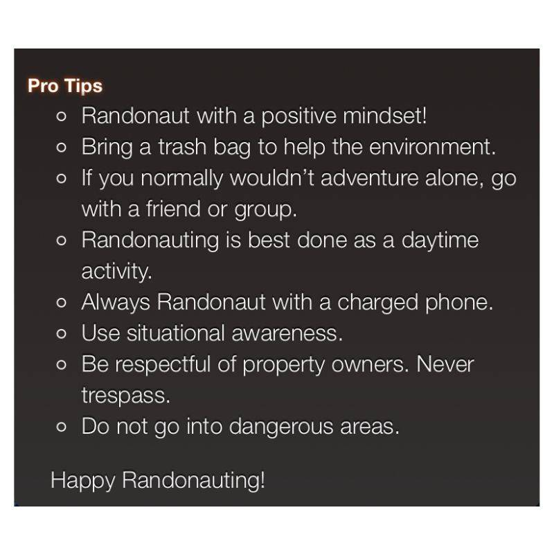 a set of rules for Randonautica