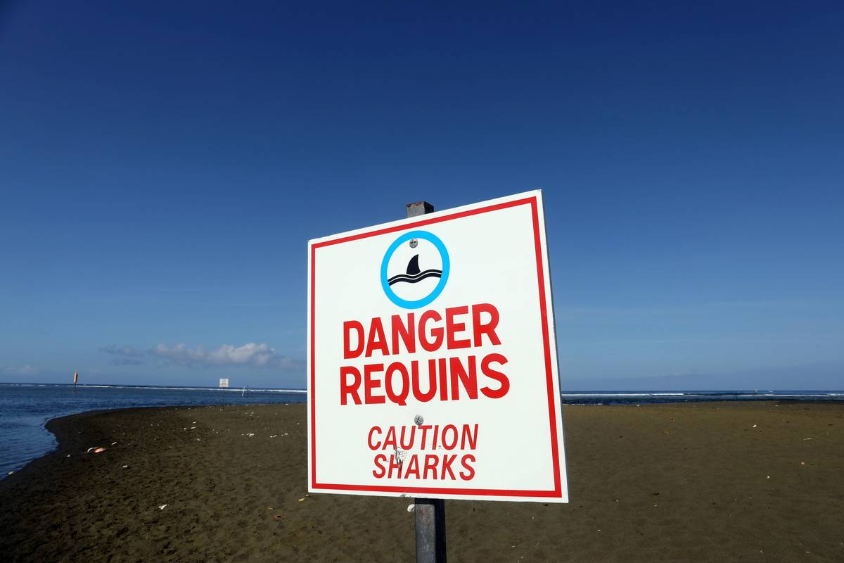 A sign warning visitors of sharks is on Réunion Island.