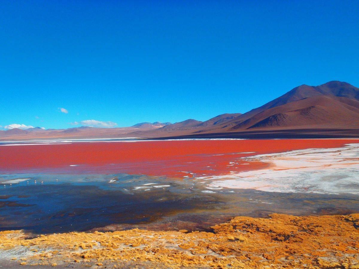 laguna colarada bolivia