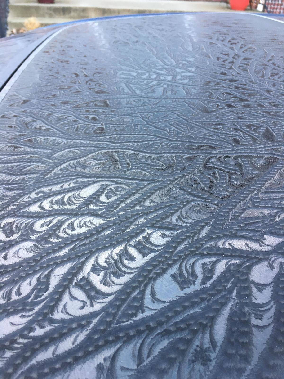 frost on top of car looks like lace pattern