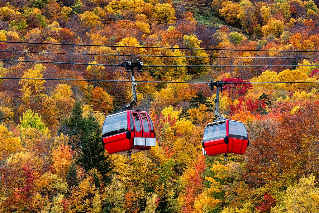 gondolas going through the colorful trees in Stowe, Vermont