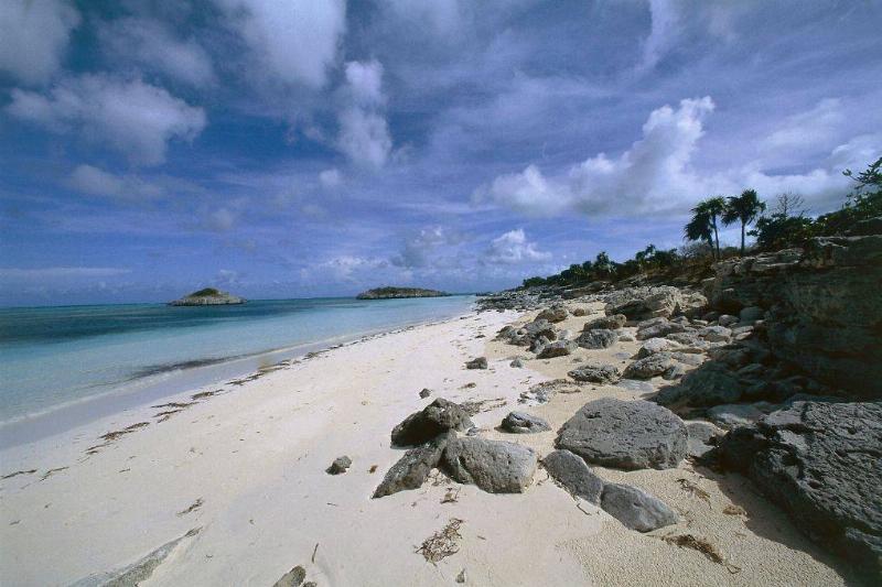 a beach in turks and caicos
