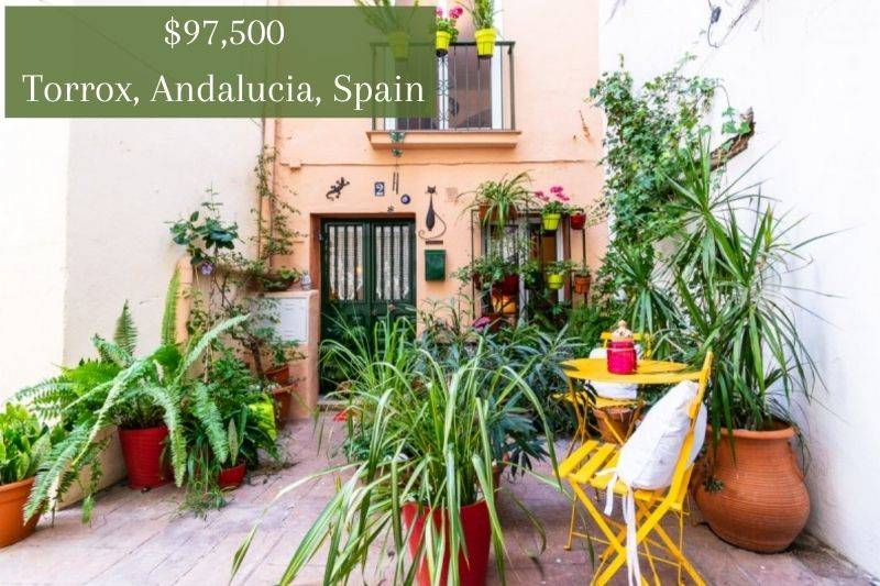 a bright condo with tons of plants in Spain
