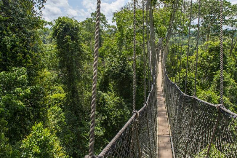 Canopy walkway in Kakum National Park