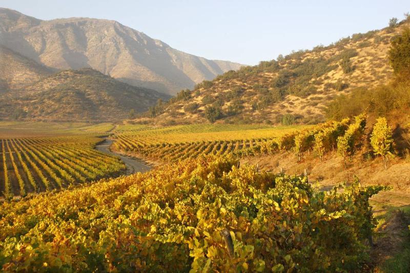 Haras de Pirque Vineyards, Chile