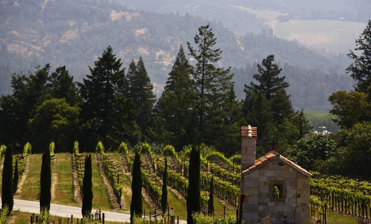 Castella Di Amorosa Winey in napa valley california
