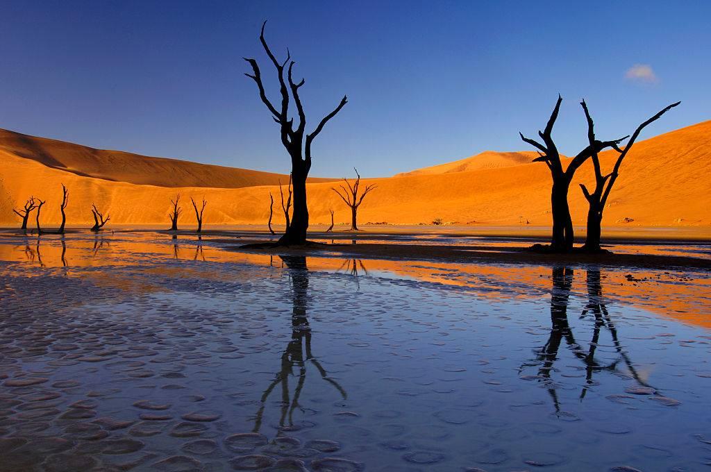 Dead Vlei in Nambia