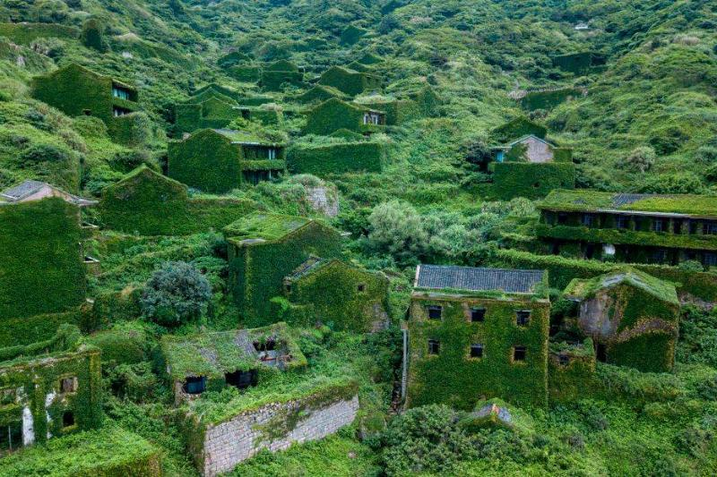 a picture of Houtouwan, the overgrown village in China