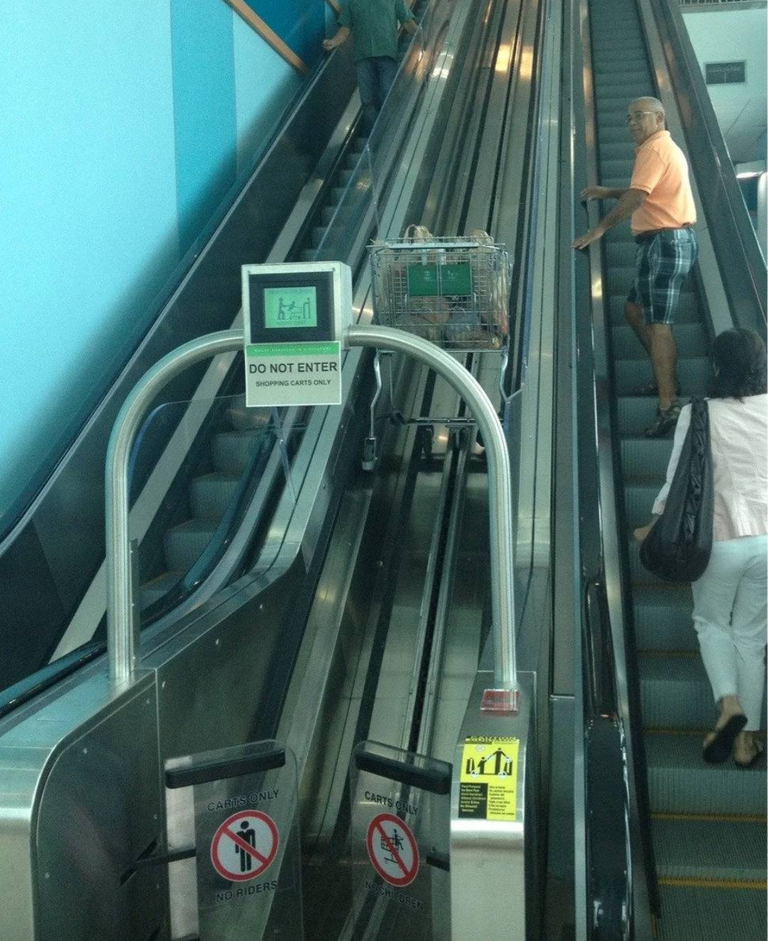 escalator for humans and one in center for shopping carts