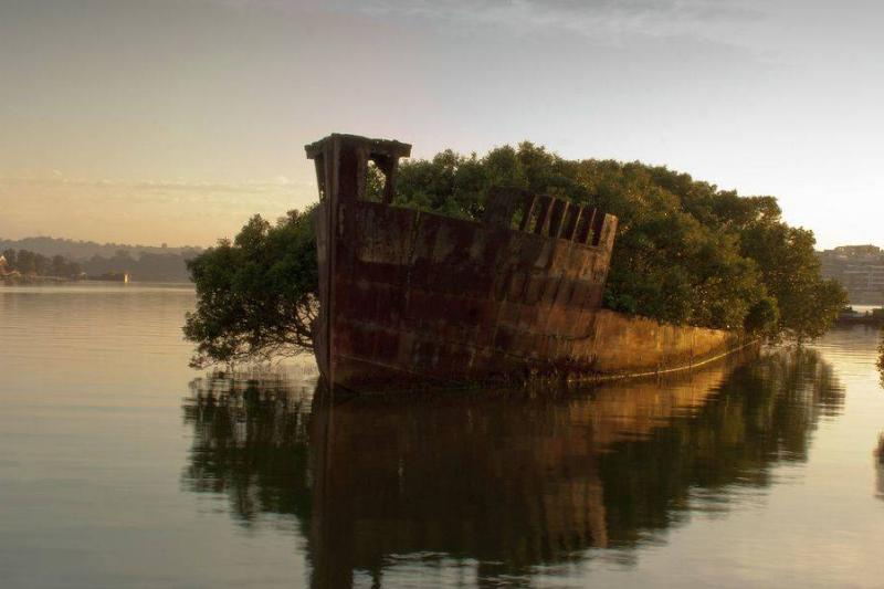 the hull of the SS Aryfield in Sydney