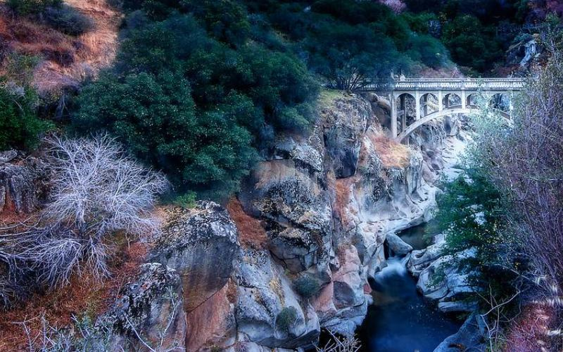 mineral king bridge sequoia