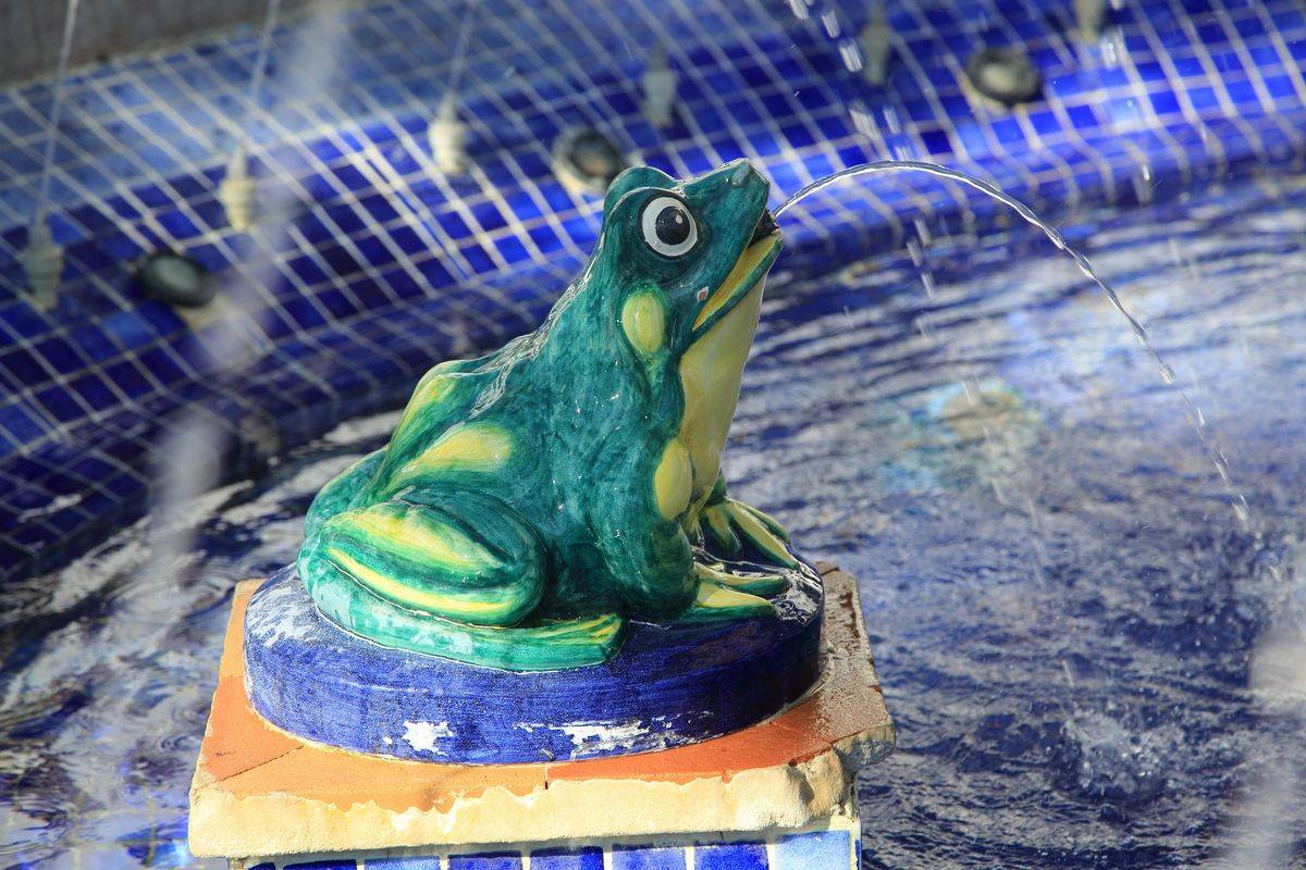 Close up of ceramic frog in fountain