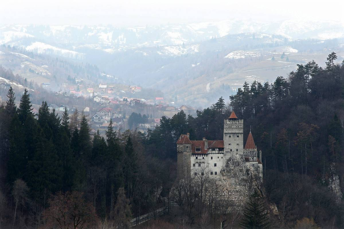 aerial view of bran's castle nestled amongst trees in mountains