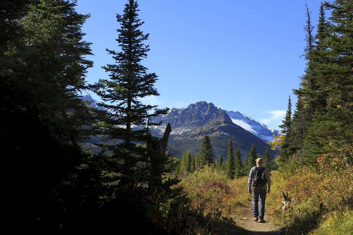 montana glacier national park two medicine lake trail