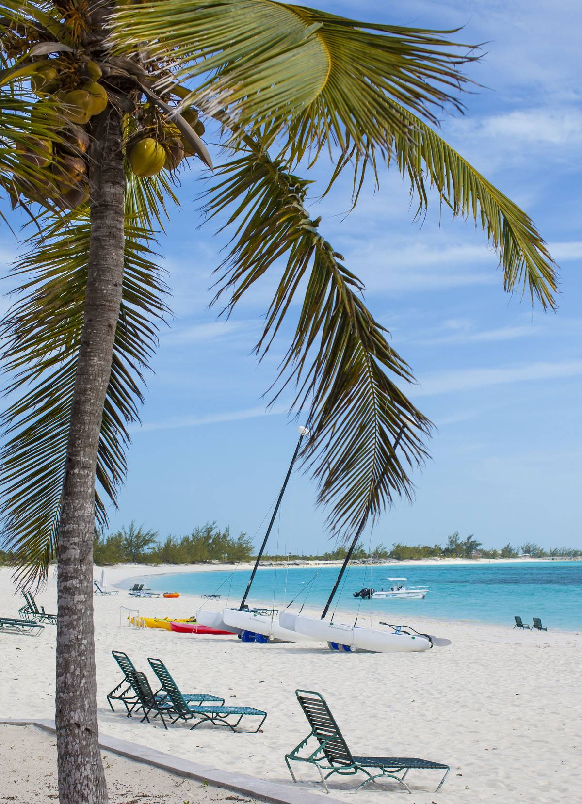 Coconut palm tree, empty sunbeds, sailing boat  at the white sandy beach of luxury Resort and Hotel Cape Santa Maria
