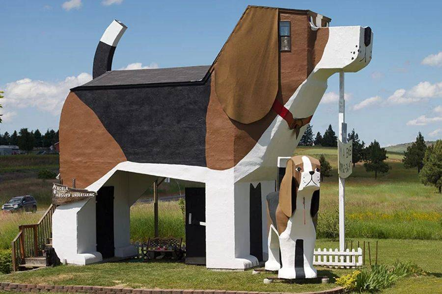 The Dog Bark Park Inn Resembles A Giant Beagle