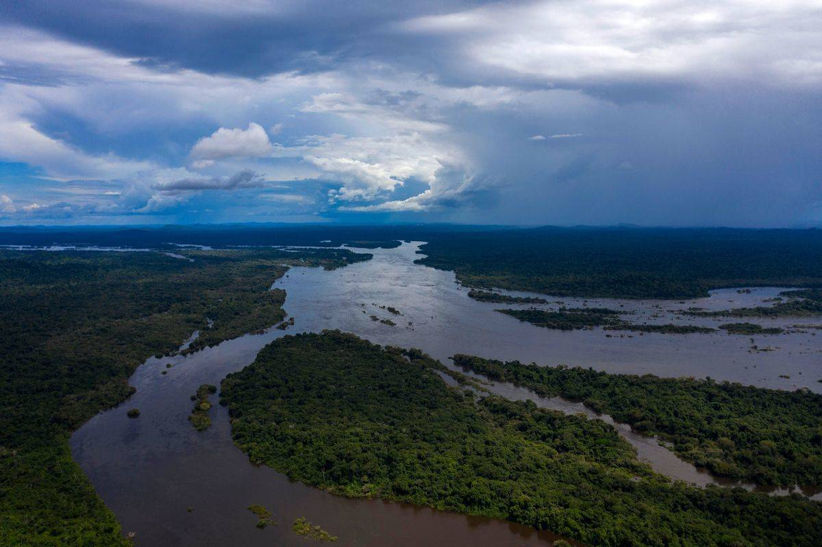 aerial view of river running through amazon rainforest
