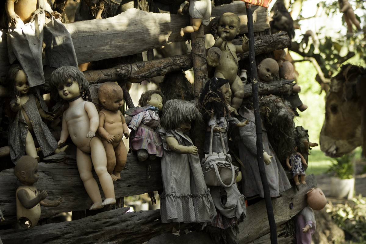 dolls nailed and hung from trees and other branches