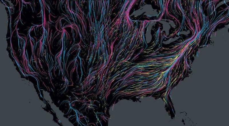 Mass Migration fo Animals throughout North America