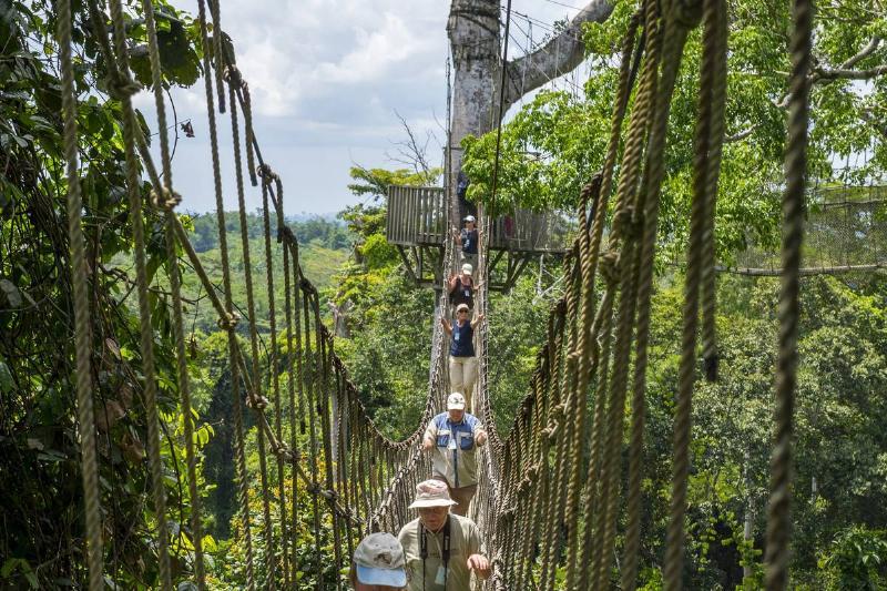 Kakum Canopy Walk Bridge Is Connected By Seven Treetops