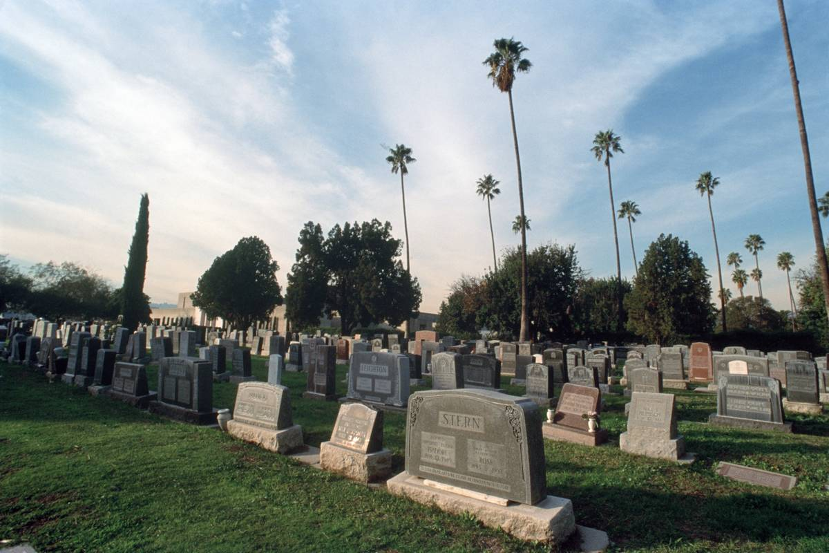 Tombstones fill a grass field under palm trees.