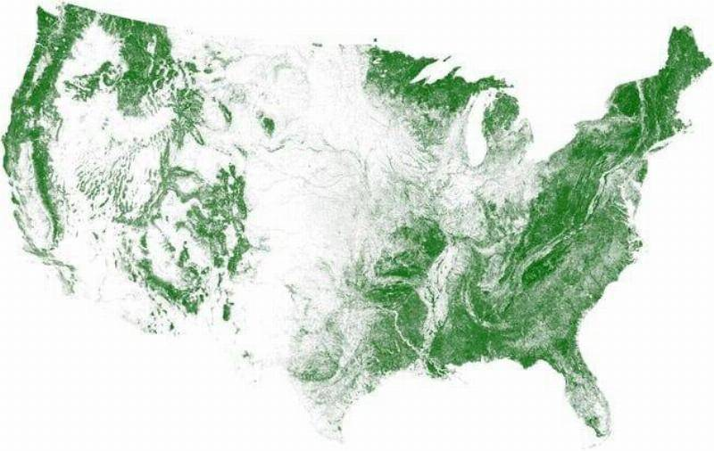 Middle America Has More Farmland Than Trees