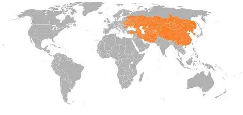 The Reach Of The Mongolian Empire In 1279