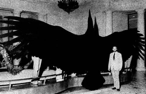 A man stands next to an Argentavis for scale.
