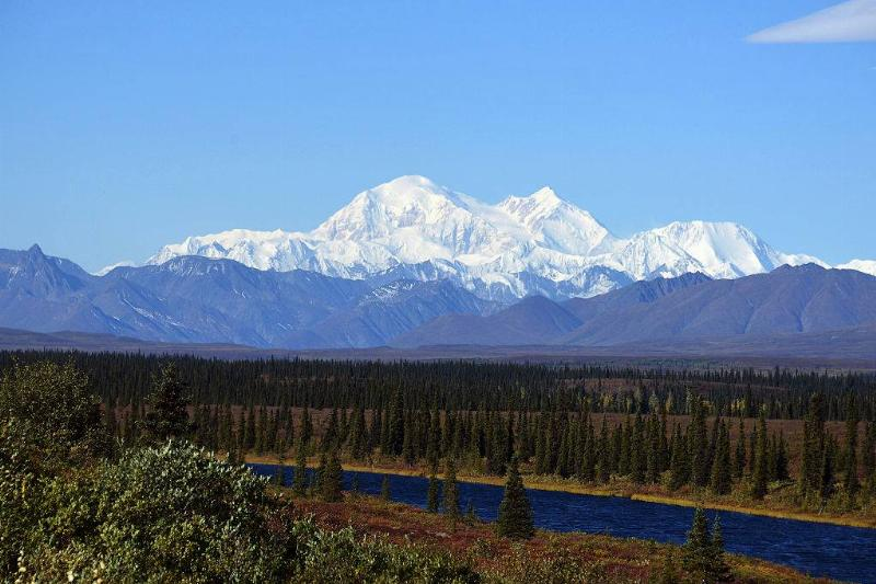 Denali National Park in Alaska with snow-covered mountains and trees
